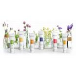 Phytozeutische Produkte